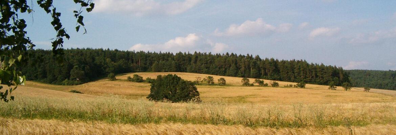 Podklady pro vyjmutí půdy ze ZPF