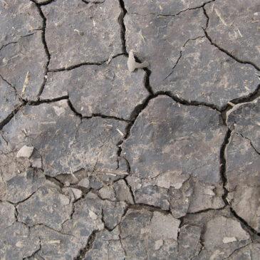 Nové podklady pro vyjmutí půdy ze ZPF